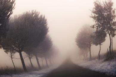Swirly Fog